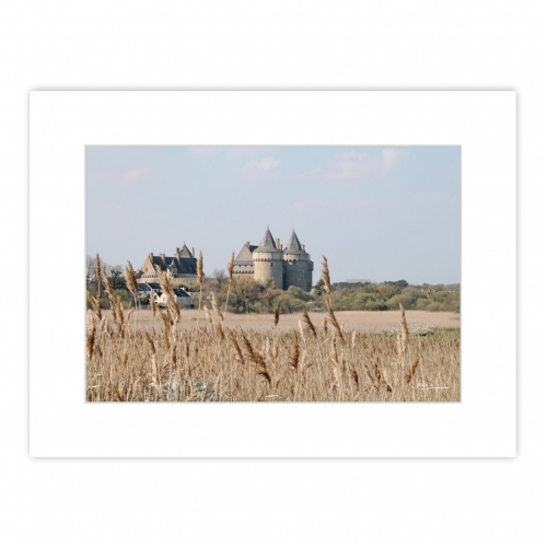 Situé entre terre et mer sur la Presqu'île de Rhuys, sur la commune de Sarzeau, Le Château de Sucsinio dresse ces tours au milieu des marais