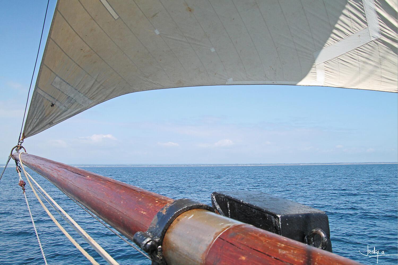 Graphisme à bord à bord du Corentin, lougre de l'Odet, lors d'un voyage aux Glénan